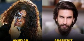 Bollywood Movies Remake Of South Movies